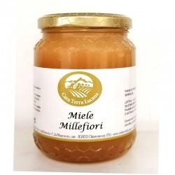 miele millefiori 500 grammi